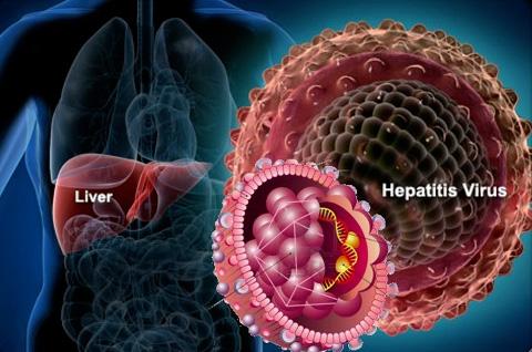 Гепатит Б